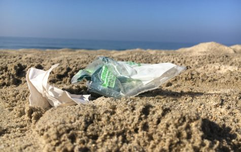 Students Clean Up Ponto Beach