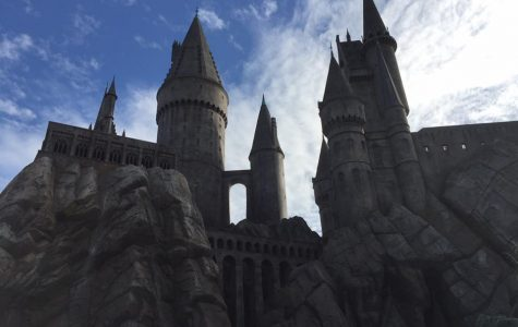 Are Theme Parks Worth the Money?