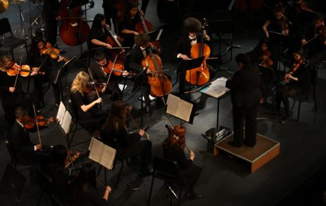Orchestra Concert Photos