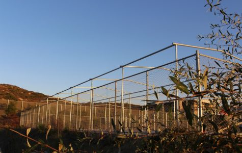 Sage Creek's new batting cage, located between the softball and baseball fields, is making steady progress for completion