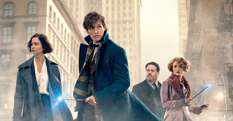 """Fantastic Beasts and Where To Find Them tells the story of Newt Scamander, played by Eddie, and his adventures in New York with a case of """"fantastic beasts"""" to a secret community of wizards and witches."""