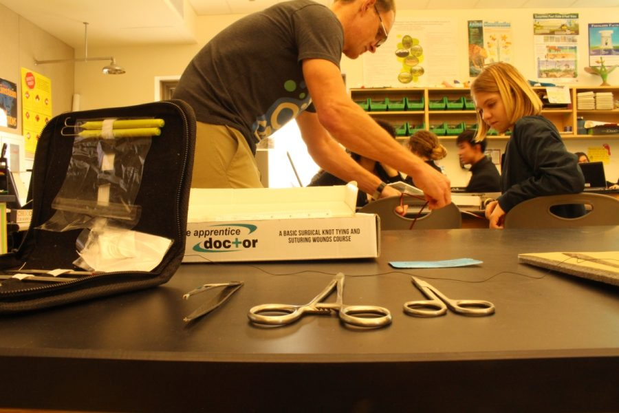 Dr. Nelson assists students in a suture lesson