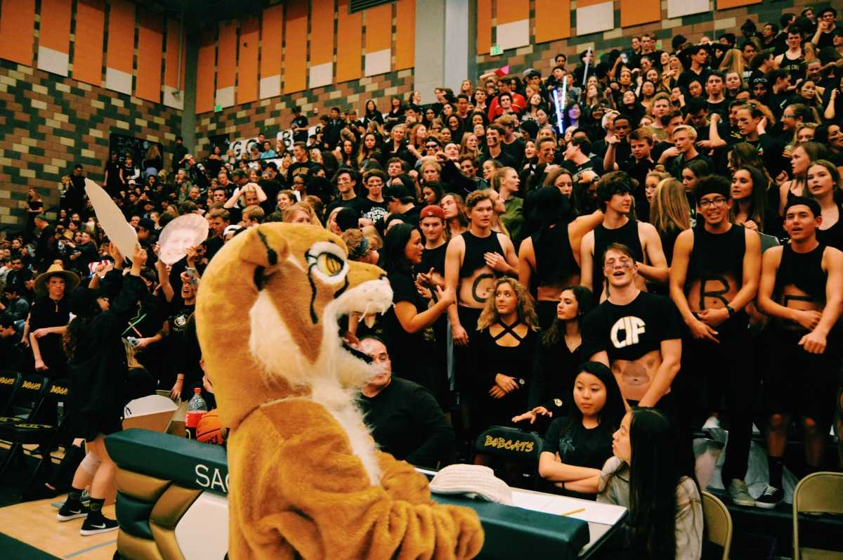 Bobbie looking into the crowd filled with students rooting for the basketball team.