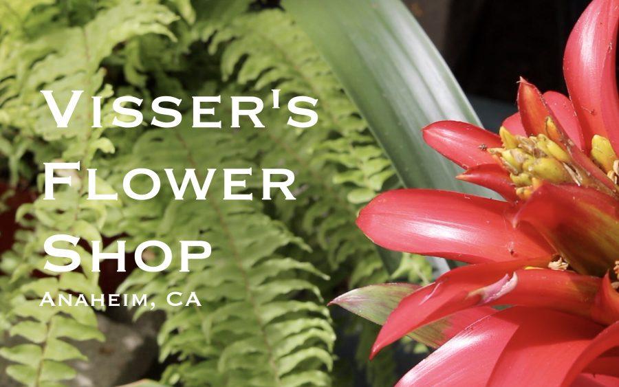 STN 2017: Spot Feature - Visser's Flower Shop