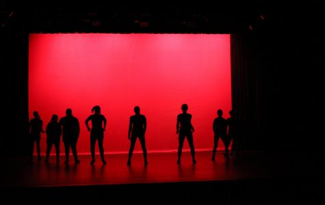 Dance Show Review