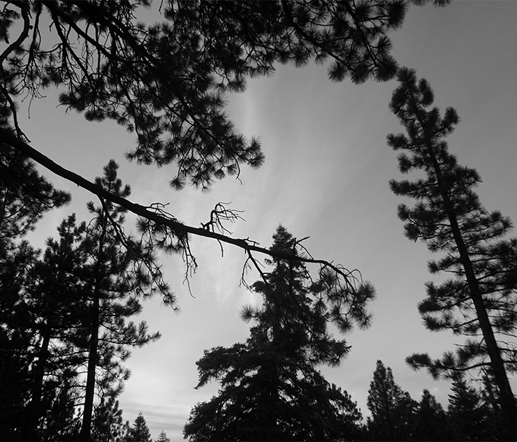 Winter+Photo+Gallery