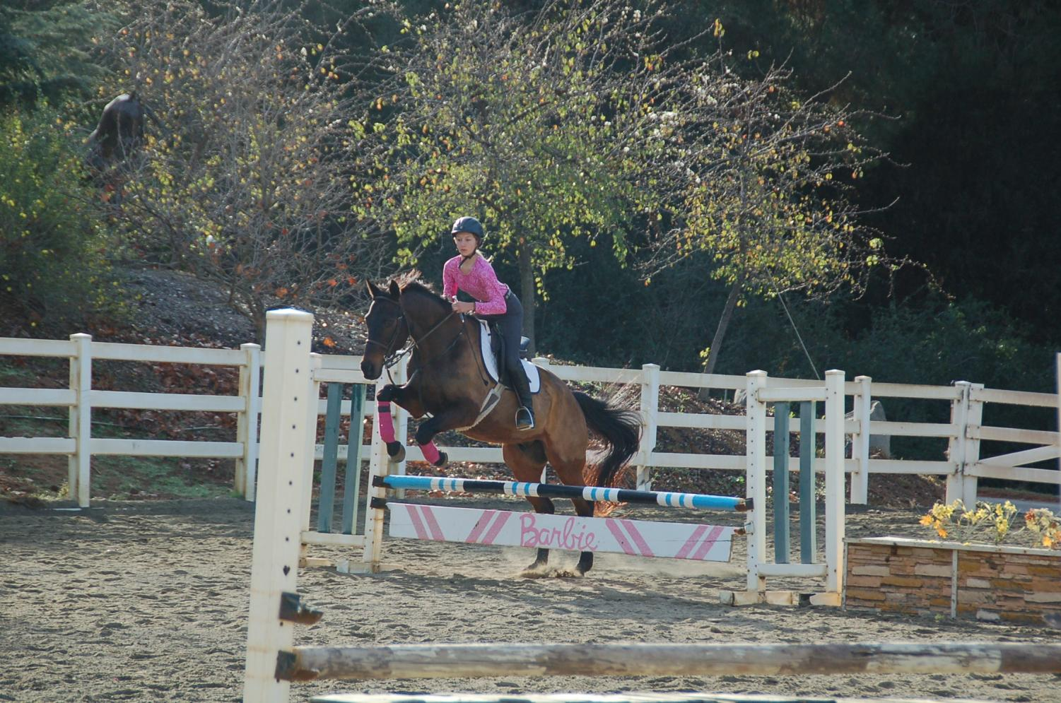 Freshman, Sophia Vansyke during her weekly practice with her favored horse: Brighton. On many occasion Sophia works on her jumping technique with her many horses and sometimes takes to the trails for a hiking experience with her friends.