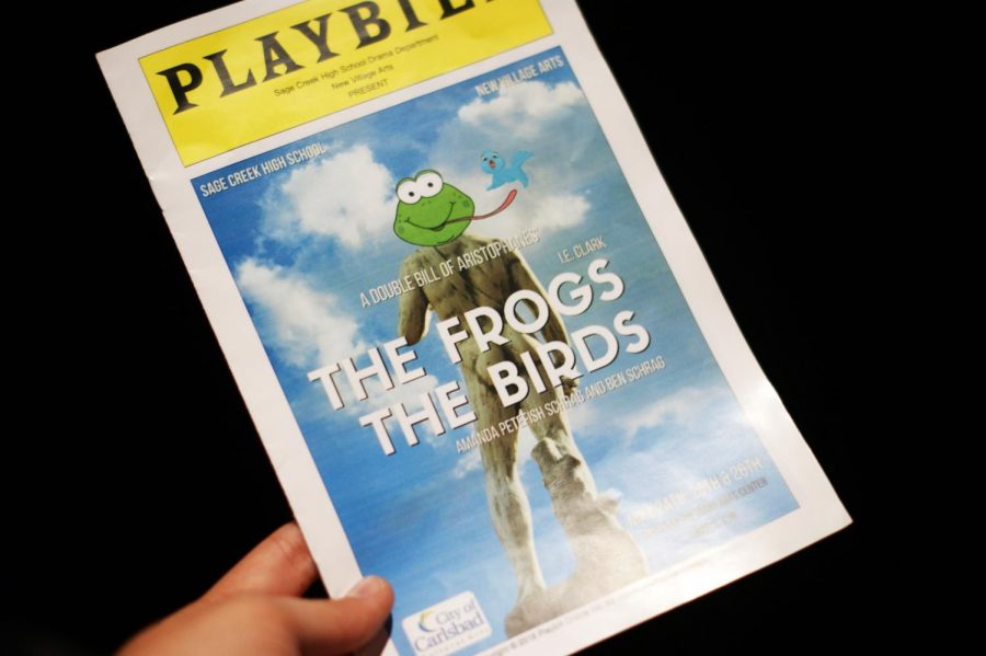 """This year's spring play, """"The Frogs and The Birds"""", although not one of the school's more popular shows, was heard to be worth seeing as it brought smiles and laughs to all those who attended."""