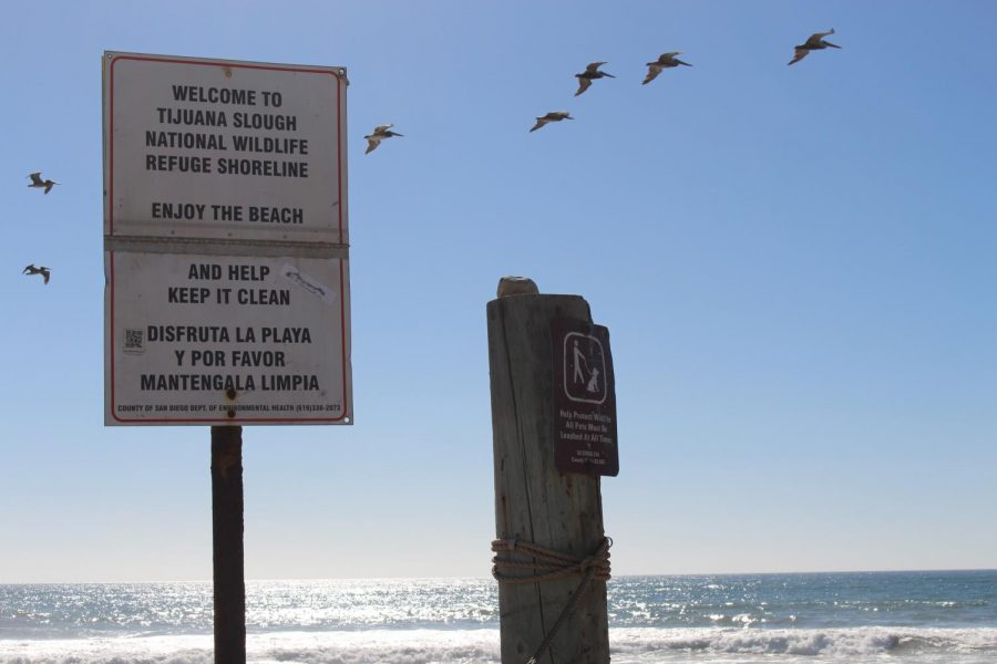 Signs+encourage+beachgoers+to+ironically+keep+the+beaches+clean+and+to+protect+the+wildlife+it+holds.+There+was+no+sight+of+anyone+on+the+beach+for+a+good+distance.
