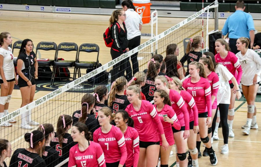 Sage Creek's girl's varsity volleyball team shakes hands after their win against opponent Vista High School.  Members of the team wore pink jerseys in support of Breast Cancer Awareness Month.