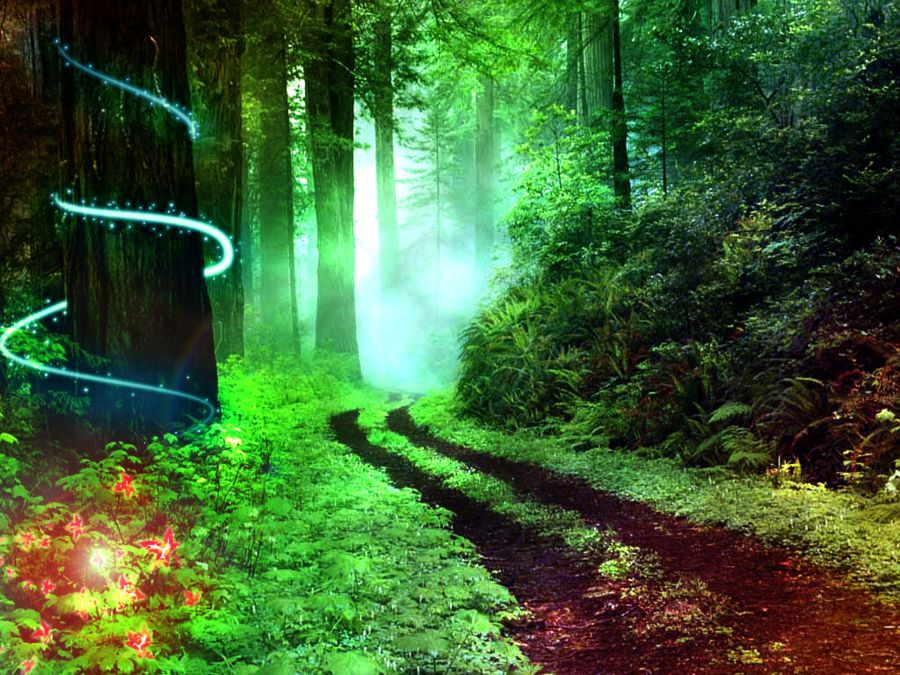 This years formal is themed Enchanted Forest. The dance will have multiple elegant decorations to go with the theme.
