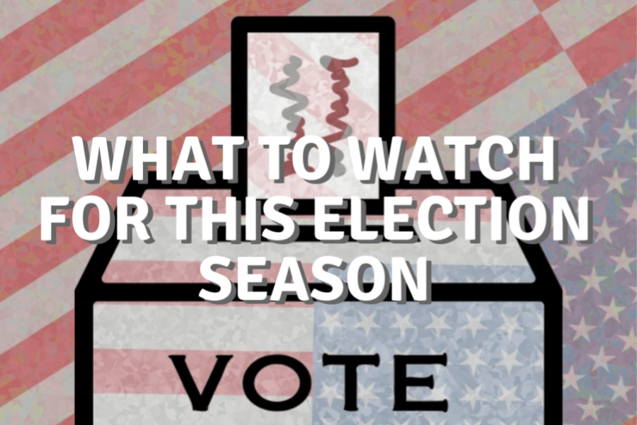 What to Watch for this Election Season