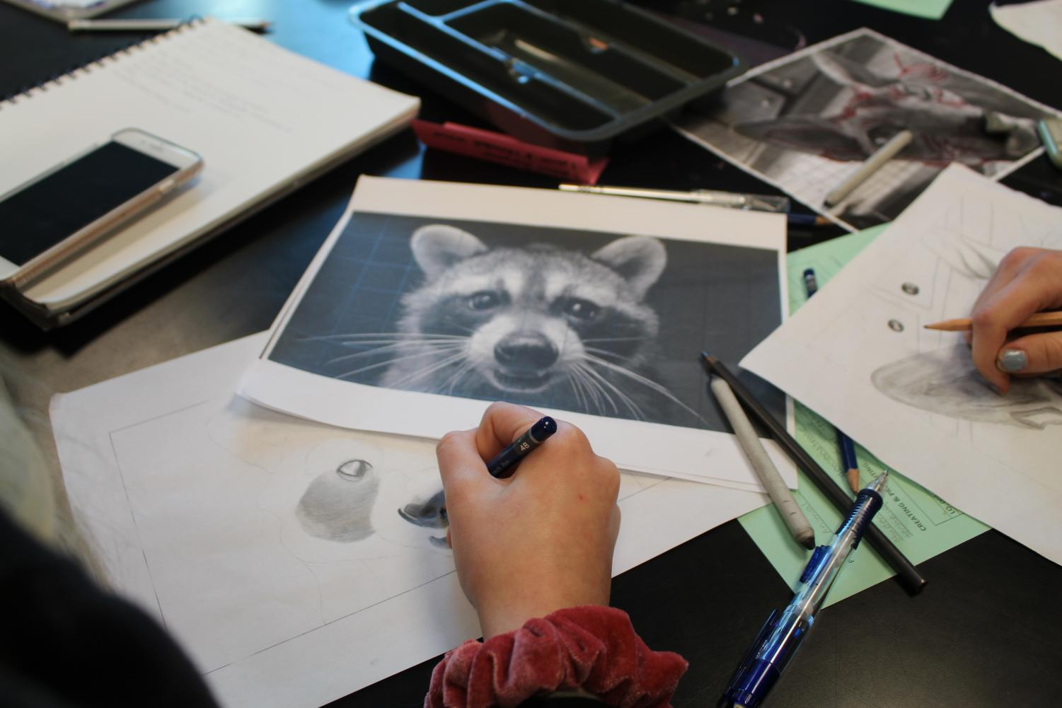 This+student+took+her+artistic+abilities+into+drawing+a+raccoon.+Art+1B+students+worked+on+recreating+animal+photos%2C+mainly+focusing+on+the+texture+within+the+photo.+