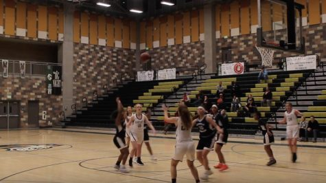 Varsity Girls Basketball 2018-2019 Recap