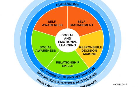 Social Emotional Learning: Future of Education