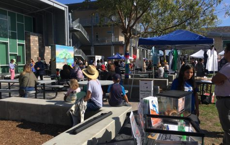Students, Teachers, Parents and Carlsbad residents attend Sage Creek's annual Festival of the Arts. For the first time, this year ended up being the first Carlsbad Community wide festival where all schools from the district were invited out.