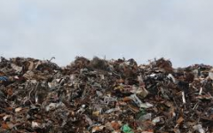 Fighting the World's Waste