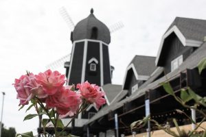 Carlsbad Windmill Turns to Trendy Food Court