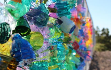 Students have transformed recycled water bottles into the coral instillation outside the 2000s building. They are already decorating for Festival of the Arts.