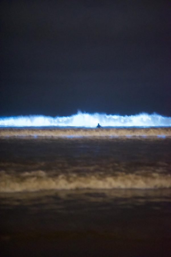 The bioluminescent waves crash along the coast in San Diego. This fascinating chemical reaction that has been taking place in the ocean is dragging people from all over to come and see the sight.