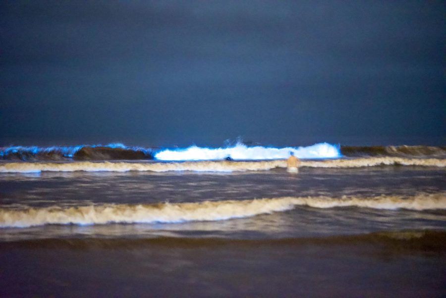 The waves emit a fluorescent blue color at Moonlight Beach on April 28. Bioluminescent waves can be seen going up the coast of Southern California due to the algae bloom of L. poly phytoplankton.