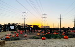 Families roam around at the Carlsbad Strawberry Company's annual pumpkin patch in search of the perfect pumpkin. Additionally, families can participate in fun activities, such as a tractor ride, apple cannons and a corn maze.